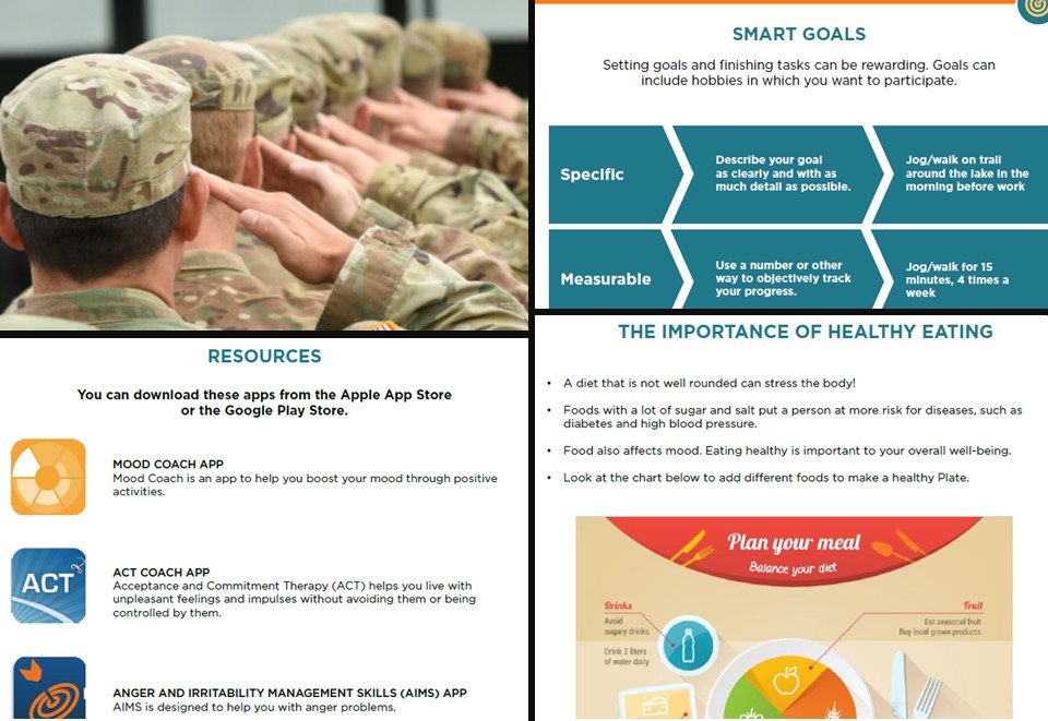 Collage of pages from the Veteran Wellness Guide