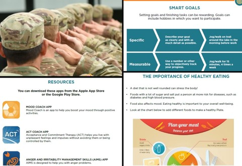 Collage of screenshots from the veterans wellness guide