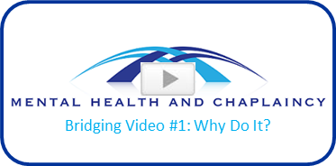 Bridging Video 1 Why Do It?
