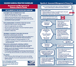 VA/DOD Clinical Practice Guideline (CPG): Assessment and Management of Patients at Risk for Suicide